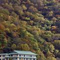 Photos: 中禅寺湖の紅葉