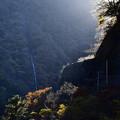 Photos: 午後の渓谷