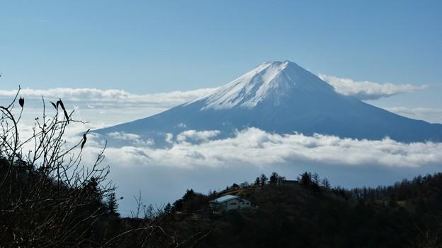 Photos: 三つ峠から