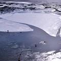 Photos: 薄氷の中に