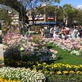 写真: 緑化フェア横浜5