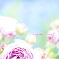 写真: flower3-401