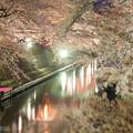Photos: 夜桜 現像違い