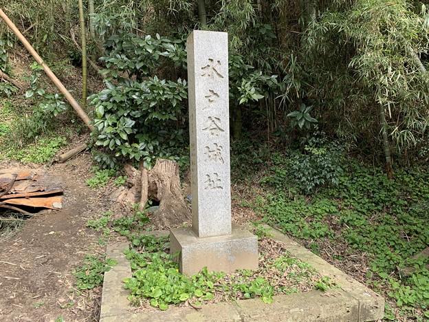 135_水戸谷城
