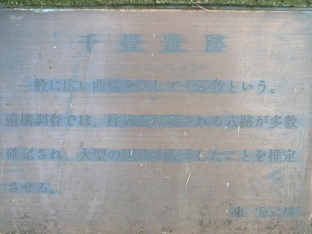 EDSCF0132