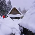 写真: 大雪中艱難的回家路