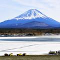 写真: 山中湖與富士山