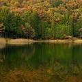 写真: 四尾連湖の紅葉