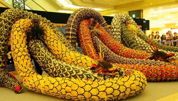 大和の大蛇