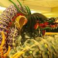 Photos: 大和の大蛇