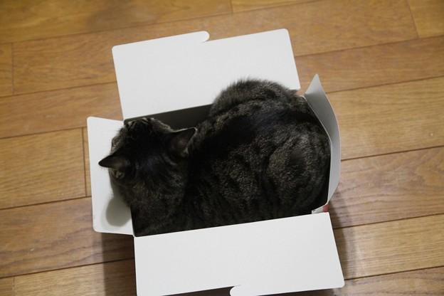 小さな箱♪