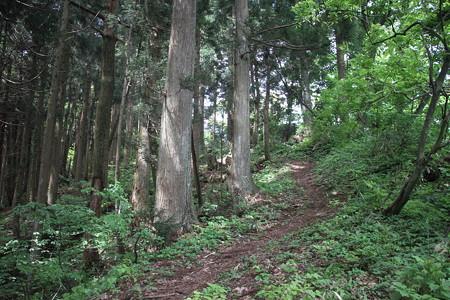 180512干支の山、戌山-飯降山 3完