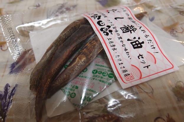 Photos: 宗田節