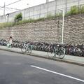 Photos: 尾頭橋駅/線路沿いの自転車置き場
