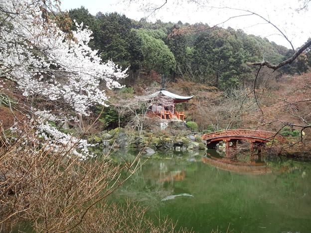 Photos: 醍醐寺