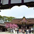 写真: 北野天満宮(京都)境内