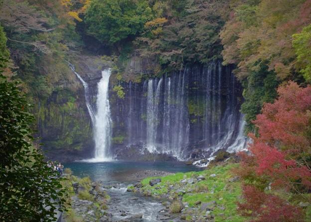 富士宮市の白糸の滝