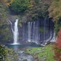 写真: 富士宮市の白糸の滝