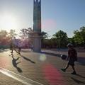 Photos: 夕時の公園ー2