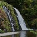 滝を撮る人