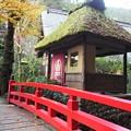 Photos: 初冬の庭園