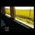 Photos: 穐の車窓