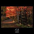 晩秋の小径