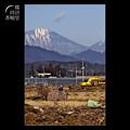 Photos: アトリ 12