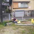 町内清掃 20200802 (4)