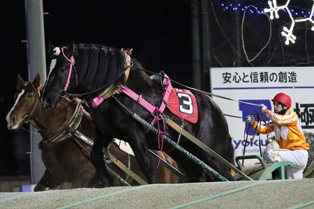 ウンカイタイショウ レース(19/02/03・9R)