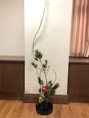 正月花2020(斜め上)