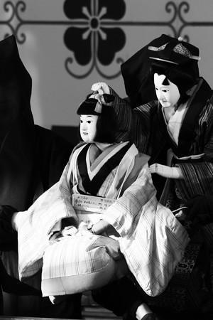 真壁白井座の人形浄瑠璃